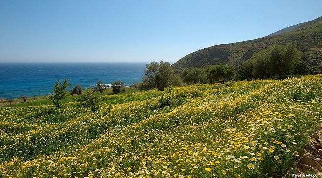 весна на Крите в Греции