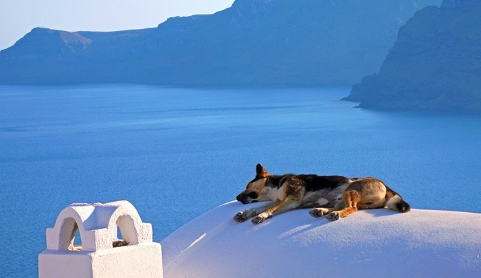 Греческая сиеста - время целительного отдыха