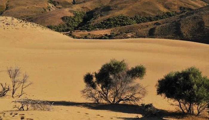 Пустыня в Греции: «маленькая Сахара» на севере Лемноса