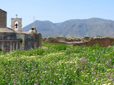 crete-in-bloom-1