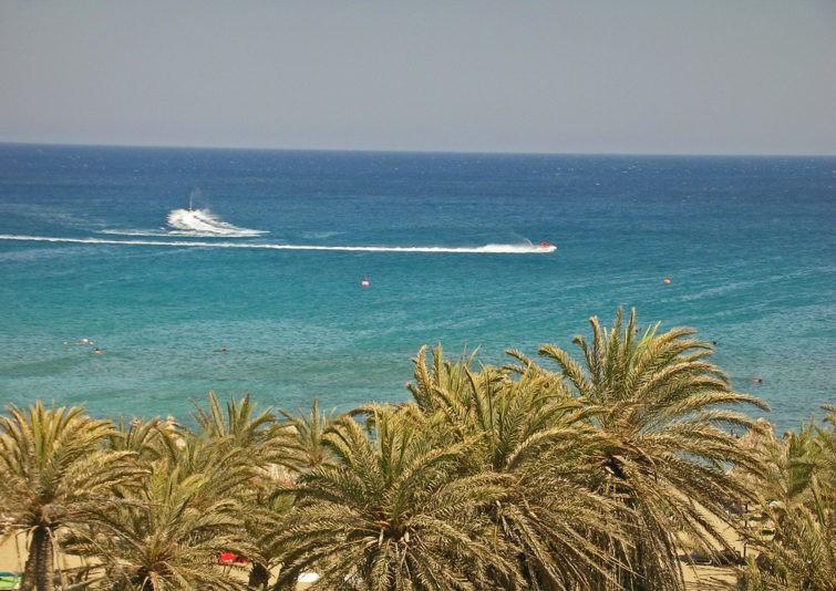 Пальмовый пляж Вай на Крите 14