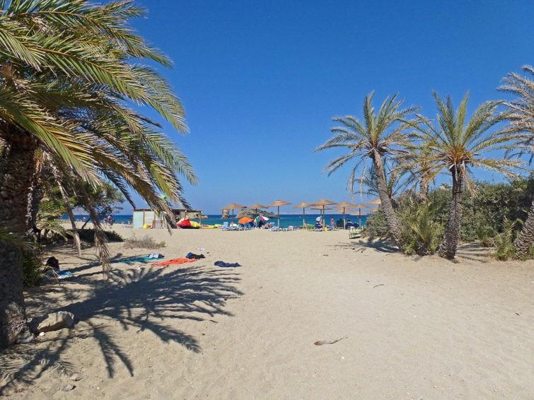 Пальмовый пляж Вай на Крите 13