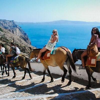 Прогулка на осликах на Санторини