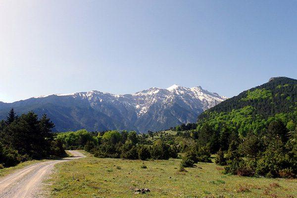 Лариса - один из зеленых городов Греции